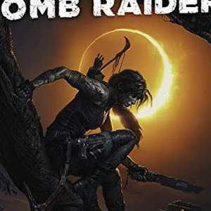 Shadow of the tomb raider ps4 в Дубовке